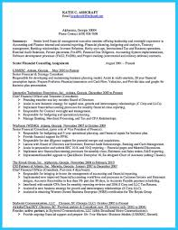 Resume For Senior Internal Auditor