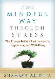 the mindful way through stress an interview shamash alidina my good friend mindful way through stress
