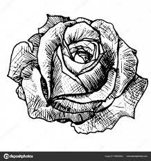 реалистичные роза татуировка векторное изображение Littlemagic