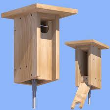 bluebird house plans. Owl Nestboxes Bluebird House Plans U