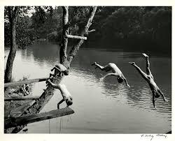 Original Vintage Photograph by A. Aubrey Bodine