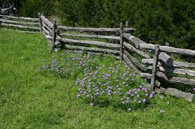 rail fence styles. A More Traditional Split Rail Fence With The Characteristic Zig-zagging  Silhouette. This Is Styles