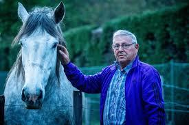 Meer Hekken Na Incident Met Paard Op Trekwedstrijd Beringen Het