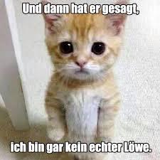 Neue Beiträge Mit Tiere Tag Kostenlose Lustige Bilder Für Whatsapp