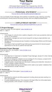 It Project Manager Resume Sample Doc Free Resume Example And