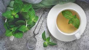 Image result for herbs and beverages