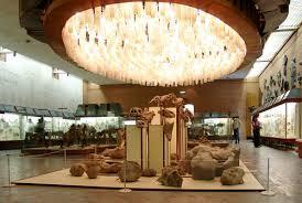 Отчёт о iv Конференции Аквариум как средство познания мира   Здесь продумано всё до мелочей от светильников