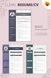 Professional Cv Format For Interior Designer Resume Template