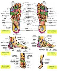 Pin By Doctor Coppelius On Feet Foot Massage Massage