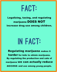 why should marijuana be legal essay n essaye why should marijuana be legal essay