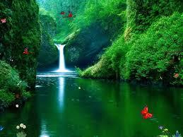free animated nature screensavers. Interesting Nature Free Animated Screensavers With Sound  Waterfalls Screensaver  Green  On Nature