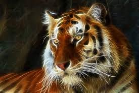 Tiger 3d art fractal wallpaper ...