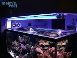 full image for reef aquarium led vs t5 lighting schedule reviews point room wall unit comfortable
