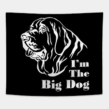 Big Dog Size Chart Im The Big Dog