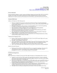 Accounting Resume Summary Statement Examples Down Town Ken More