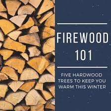 Firewood Btu Comparison Charts Best Types Of Hardwood Trees To Use For Firewood Oak