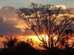 Resultado de imagem para venha ver o por do sol