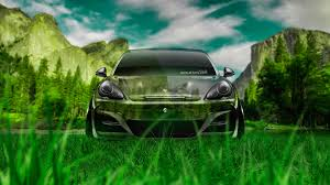 porsche panamera crystal nature car