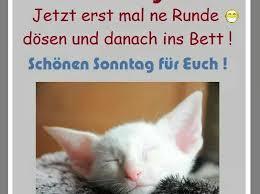 Lustige Sprüche Sonntag Für Whatsapp Gb Pics Jappy Facebook