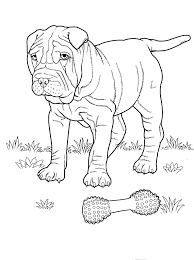 Dog Coloring Pages 2 Teenagers Coloring