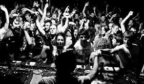Image result for Dj with crowd