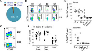 Ccr8 Expression Defines Tissue Resident Memory T Cells In