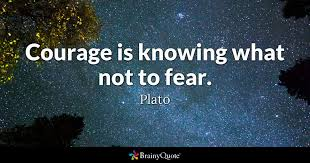 Courage Quotes New Courage Is Knowing What Not To Fear Plato BrainyQuote