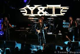 Image result for y & t