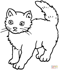 coloring page of a cat