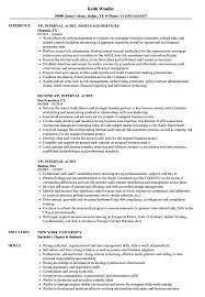 Vp Internal Audit Resume Samples Velvet Jobs