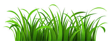 Grass Clipart Tall Grass Free collection Download and share Grass
