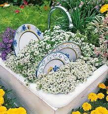 Small Picture Best 20 Dish garden ideas on Pinterest Suculent plants Outdoor