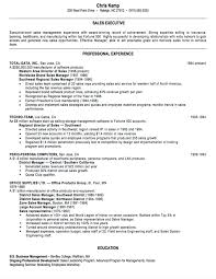 Resume Templates Example Banking Sales Examples It Executives Clas