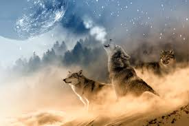 wolf howling at the moon wallpaper hd. Simple Wallpaper Moon  Wolf Wallpapers ID702520 With Howling At The Wallpaper Hd W