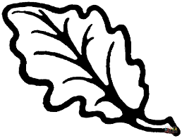Small Picture Oak leaf coloring pages