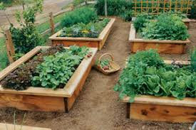 how to make garden beds. Simple Beds How To Build Raised Beds For To Make Garden D
