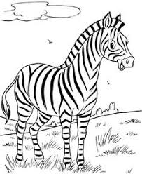 Small Picture Free Printable Zebra Coloring Pages For Kids Coloring pages