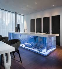 Kitchen Counter With Giant Saltwater Aquarium Beneath
