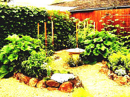 layout examples size of kitchen vegetable plot design small garden