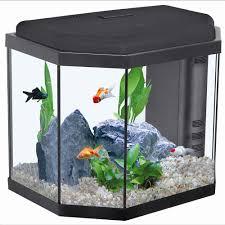 """Résultat de recherche d'images pour """"aquarium"""""""