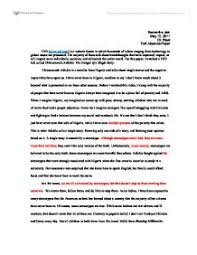 The danger of a single story essay