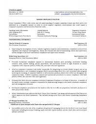 Bsa Officer Sample Resume Compliance Officer Resume Sample Velvet Jobs Photo Examples 22