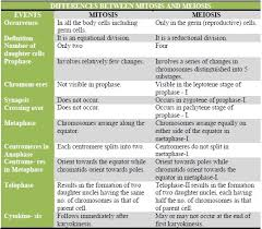 Mitosis And Meiosis Compare And Contrast Chart Google