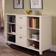 Bookshelf Filing Cabinet Bookcase File Cabinet Amazing Bookcases