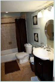 Best Paint Color For Small Windowless Bathroom Torahenfamilia
