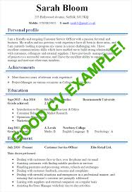 Example Good Resume Gorgeous Sample Of Excellent Cv Radiotodorocktk