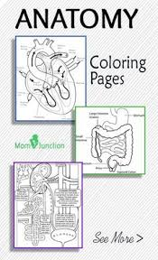 Small Picture Free Layers of the Earth Printables Notebooking Pages Science