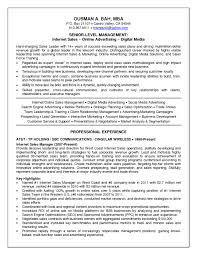 media buyer resume broadcast media buyer resume ict ocr coursework help job and resume template broadcast media buyer resume ict ocr coursework help job and resume template