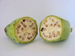 We did not find results for: Seedless Fruit Is Not Something New Fruit Nuts