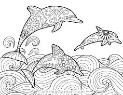 Once you've colored a page, please take a picture and email it to us at fins@dolphins.org. Dolphin Adult Coloring Page